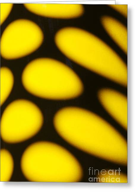 Total Abstract Greeting Cards - Abstract 17 Greeting Card by Tony Cordoza