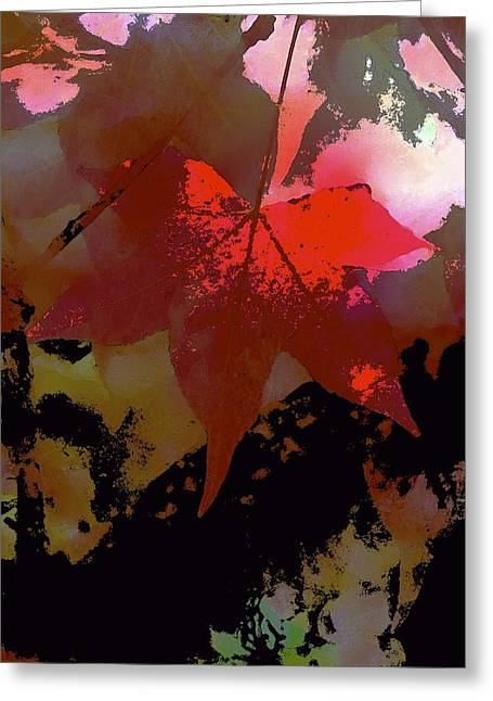 Pamela Cooper Greeting Cards - Abstract 283 Greeting Card by Pamela Cooper