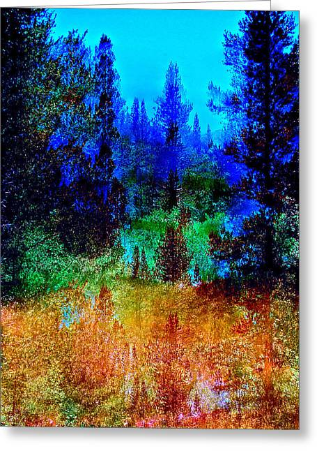 Pamela Cooper Greeting Cards - Abstract 88 Greeting Card by Pamela Cooper