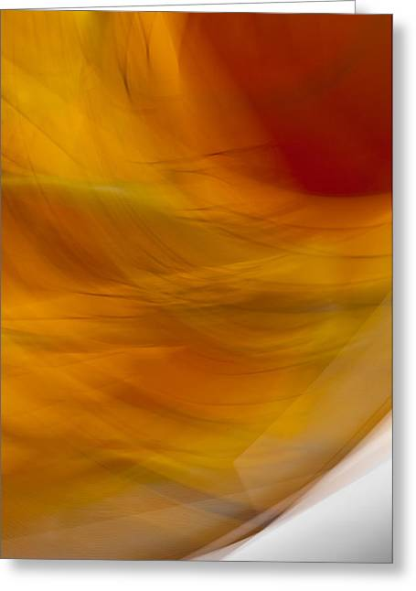 Cheap Abstract Art Greeting Cards - Abstract Art - Cocooned Greeting Card by Laria Saunders