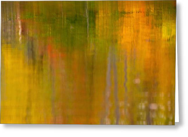 D700 Greeting Cards - Abstract Autumn  Greeting Card by Gregory Ballos