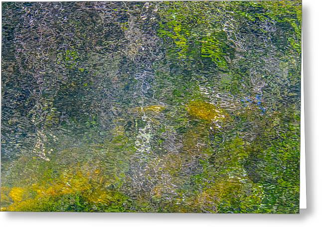 Trees Reflecting In Creek Photographs Greeting Cards - Abstract By Nature Greeting Card by Roxy Hurtubise