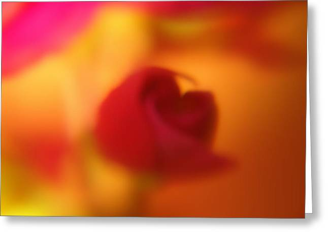 Shades Of Red Greeting Cards - Abstract Flower Greeting Card by Jeri lyn Chevalier