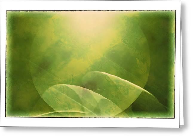 Susan Leggett Digital Greeting Cards - Abstract Globe Greeting Card by Susan Leggett