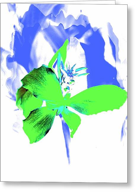 Pictures Of Oregon Greeting Cards - Abstract Green Greeting Card by Cathie Tyler