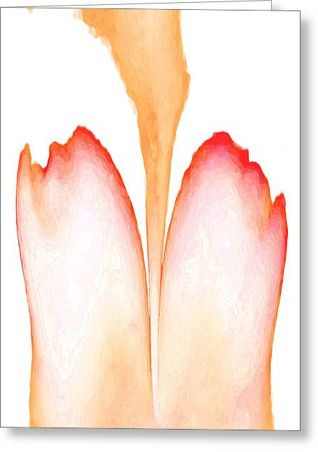Abstract In Bloom 2 Greeting Card by James Barnes