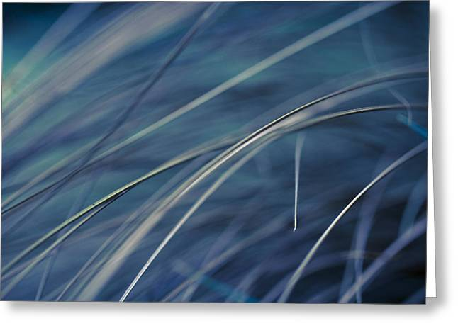 Bambers Greeting Cards - Abstract in Blues. Greeting Card by Clare Bambers