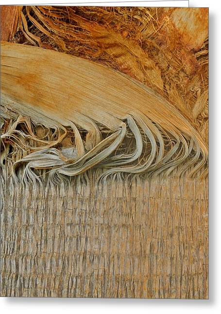 Kirsten Giving Greeting Cards - Abstract in Gold and Brown Greeting Card by Kirsten Giving