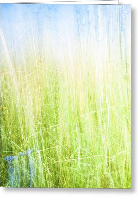 Ethereal Beach Scene Greeting Cards - Abstract in green and blue. Greeting Card by Brian Scantlebury