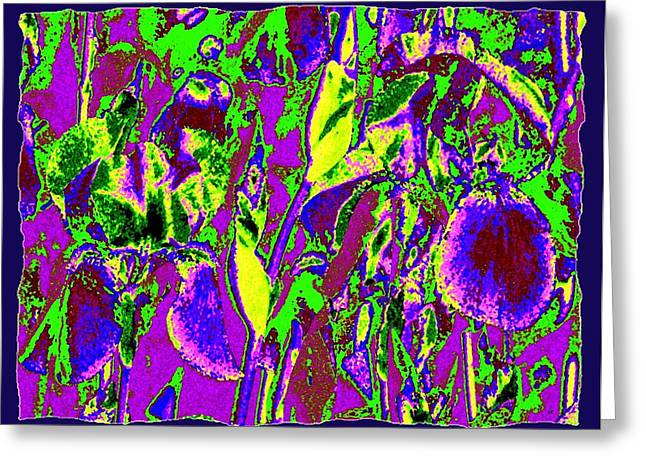 Botanical Abstract Greeting Cards - Abstract Irises Greeting Card by Will Borden