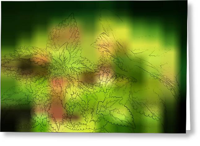 Ink Drawing Photographs Greeting Cards - Abstract Leaves Greeting Card by Linda Phelps