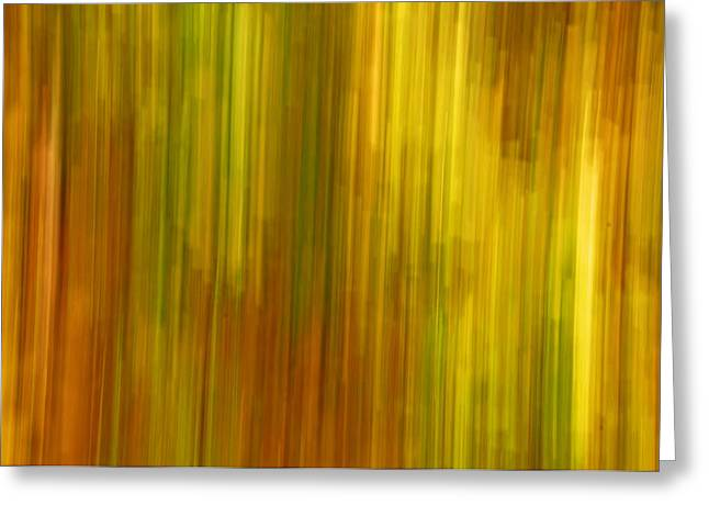 Abstract nature background Greeting Card by Gry Thunes