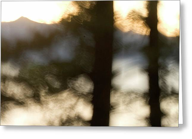 Abstract Of Trees In Front Of Crater Greeting Card by Phil Schermeister
