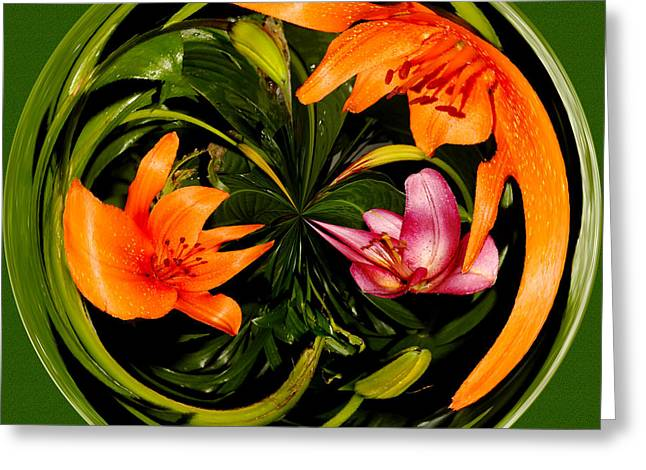 Abstract Orange Lily I Greeting Card by Jeff McJunkin