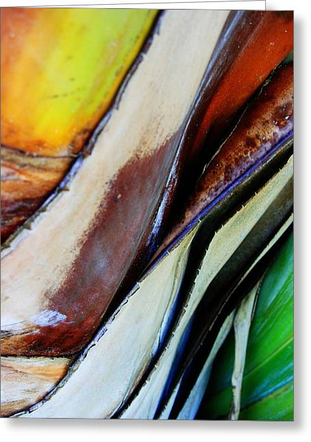 Abstract Movement Greeting Cards - Abstract Palm 3 Greeting Card by Heather Green