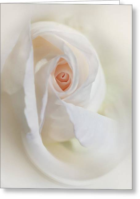 Abstract Pastel Rose Flower Greeting Card by Jennie Marie Schell
