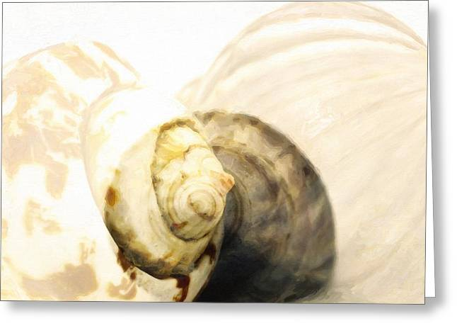 Assorted Mixed Media Greeting Cards - Abstract Sea shells  Greeting Card by Toppart Sweden