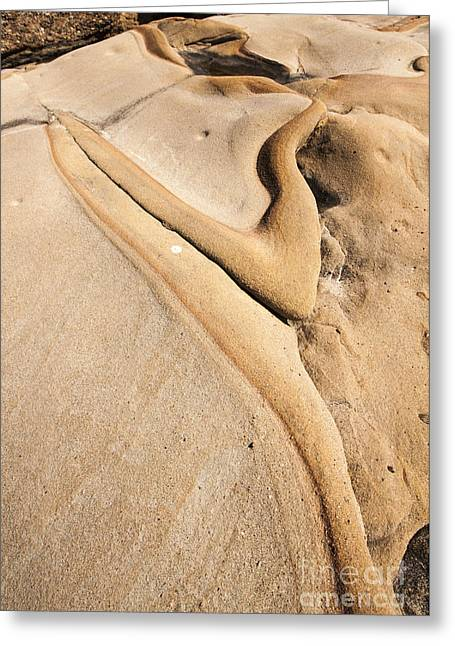 Point Lobos Greeting Cards - Abstract Stone Flow Greeting Card by Juan Romagosa