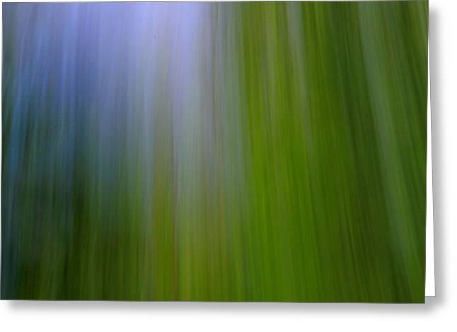 Lush Green Greeting Cards - Abstract Summer Forest Greeting Card by Dan Sproul