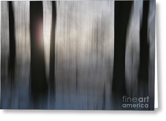 Ghostly Greeting Cards - Abstract Trees 7 Greeting Card by Circe Lucas