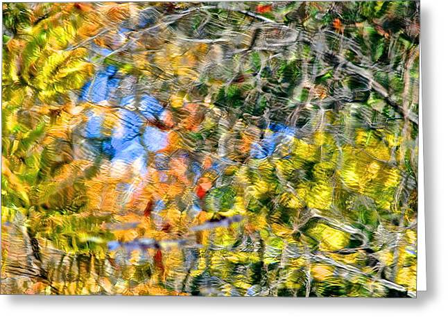 Liquid Gold Greeting Cards - Abstracts of Nature Greeting Card by Frozen in Time Fine Art Photography