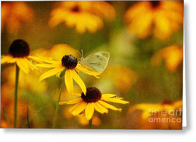 Gold Bug Greeting Cards - Abundance Greeting Card by Lois Bryan
