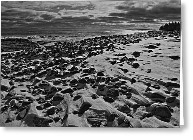 Acadia Beach In Winter Greeting Card by David Rucker