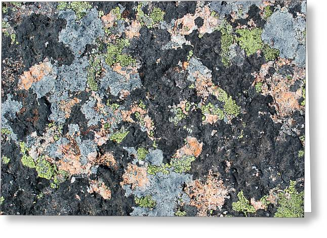 Maine Shore Greeting Cards - Acadia Granite 7 Greeting Card by Mary Bedy
