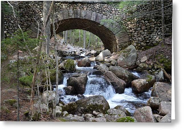 Jordan Trail Greeting Cards - Acadia National Park Bridge Greeting Card by Lena Hatch