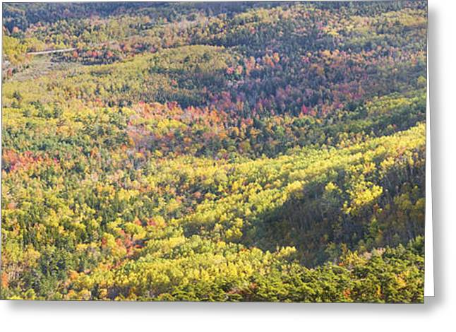 Down East Greeting Cards - Acadia National Park - Cadillac Mountain- Fall Folige- Maine Greeting Card by Keith Webber Jr
