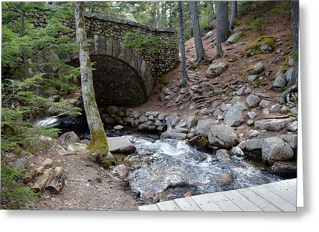 Jordan Trail Greeting Cards - Acadia National Park Carriage Road Bridge Greeting Card by Lena Hatch