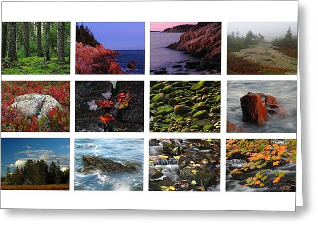 Photo Calendars Greeting Cards - Acadia National Park Greetings Greeting Card by Juergen Roth