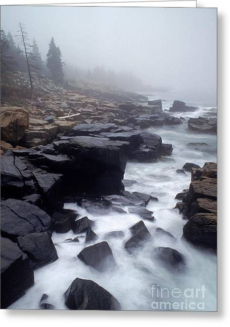 Acadia National Park, Maine Greeting Card by George Ranalli
