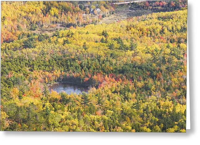Maine Islands Greeting Cards - Acadia National Park - Mount Desert Island -Fall Foliage- Maine Greeting Card by Keith Webber Jr