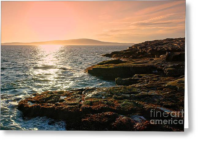 Maine Landscape Greeting Cards - Acadia National Park Greeting Card by Olivier Le Queinec