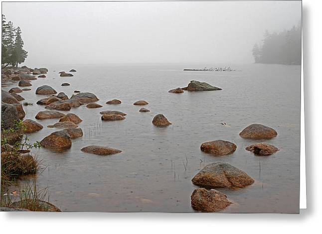 Maine Spring Greeting Cards - Acadia National Park Solitude Greeting Card by Juergen Roth