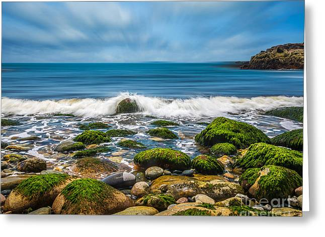 Spring In Maine Greeting Cards - Acadia Ocean Breeze Greeting Card by Susan Cole Kelly