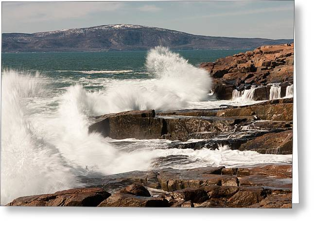 Ocean Landscape Greeting Cards - Acadia Waves 4198 Greeting Card by Brent L Ander