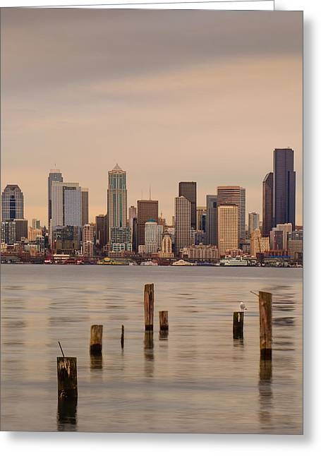 Seattle Waterfront Greeting Cards - Across Elliott Bay Greeting Card by Dan Mihai