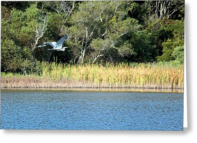 Low Country Watercolor Greeting Cards - Across the Marsh Greeting Card by Suzanne Gaff