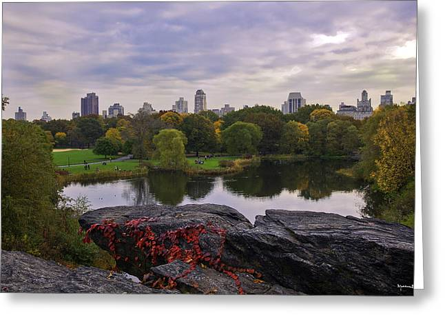 New York Vista Greeting Cards - Across the Pond 2 - Central Park - NYC Greeting Card by Madeline Ellis