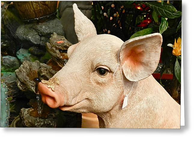 Acrylic Pig At Discount Greeting Card by Ion vincent DAnu