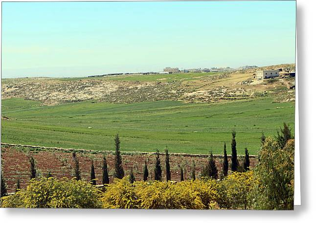 Hebron Greeting Cards - Ad Dhahiriya Beautiful Landscape Greeting Card by Munir Alawi