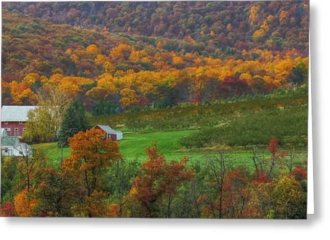 Orchard Digital Art Greeting Cards - Adams County - Wine Country Greeting Card by Lori Deiter