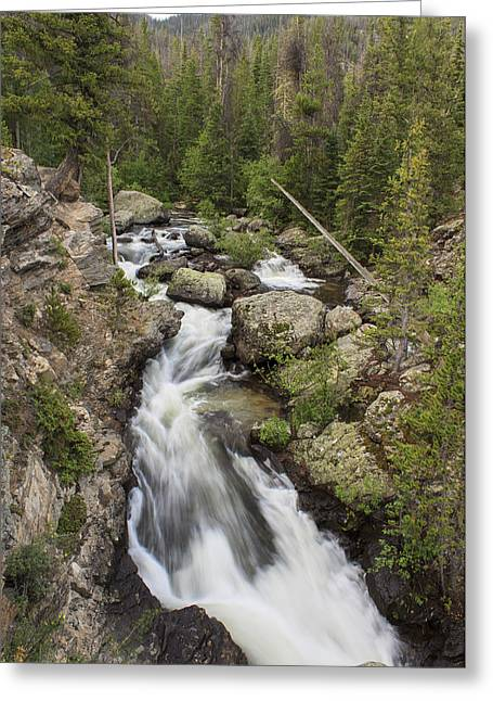 Water Flowing Greeting Cards - Adams Falls Rocky Mountain NP Greeting Card by Richard Smith
