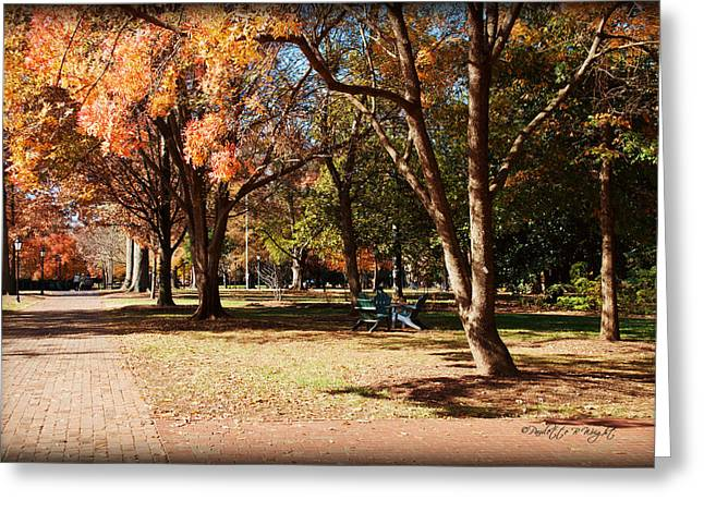 Corporate Elites Greeting Cards - Adirondack Chairs - Davidson College Greeting Card by Paulette B Wright