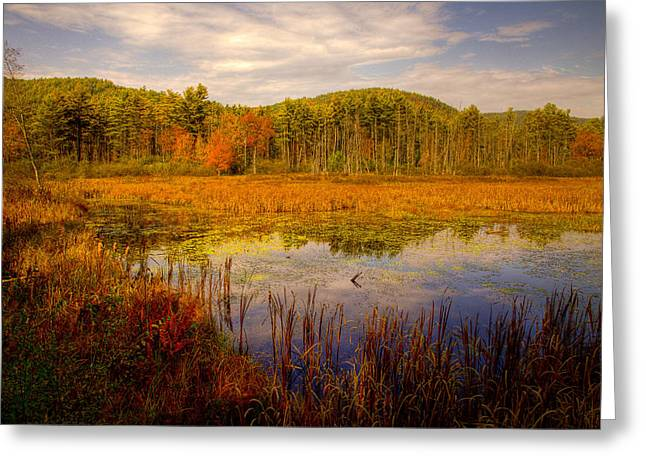 Fall Folage Greeting Cards - Adirondack Pond II Greeting Card by David Patterson