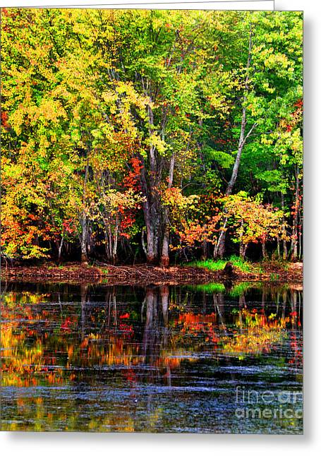 Recently Sold -  - Berry Greeting Cards - Adirondack Reflections Greeting Card by Diane E Berry