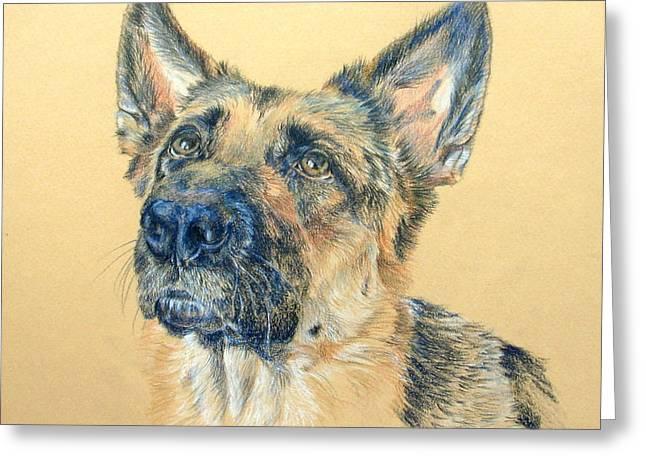 Working Dog Drawings Greeting Cards - Adoring Greeting Card by Liz  Lamb