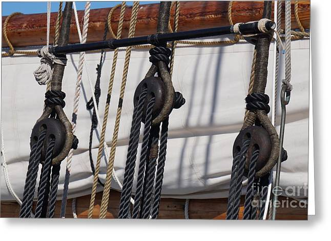 Schooner Greeting Cards - Adventure - Ropes and Pulleys Greeting Card by Zori Minkova